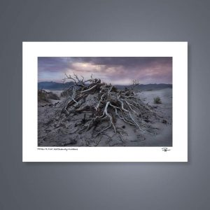 22 x 16 Hand-Signed Fine Art Photography Of Mesquite Flats Death Valley California