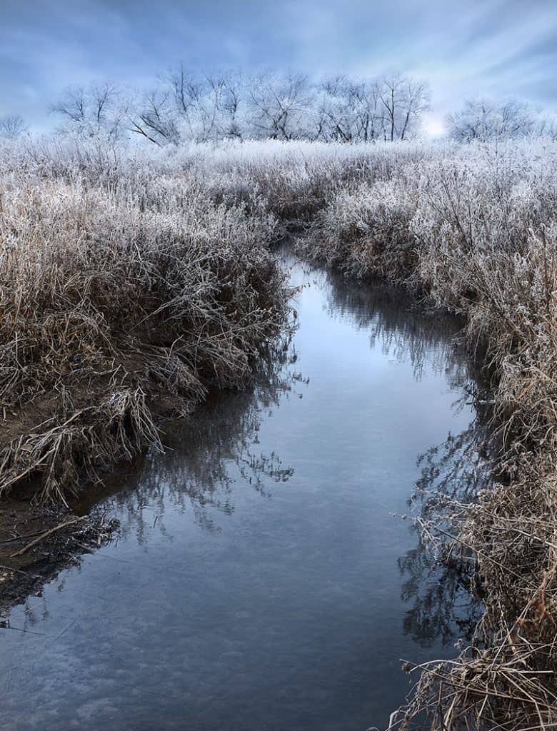 Photo of Sioux Falls South Dakota Winter Frost on Trees Near Creek