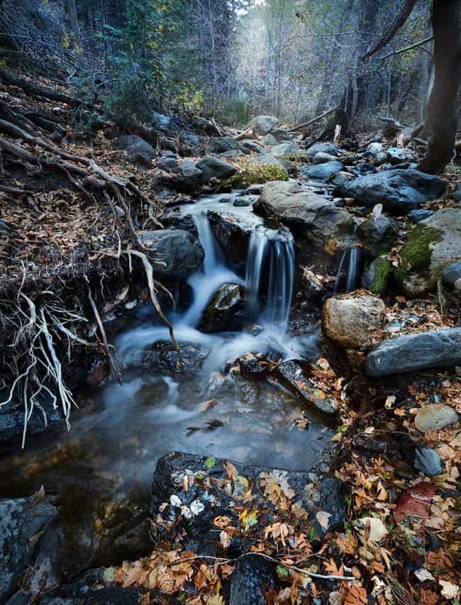 Photography Portfolio | Heckel Photography | Sioux Falls, SD